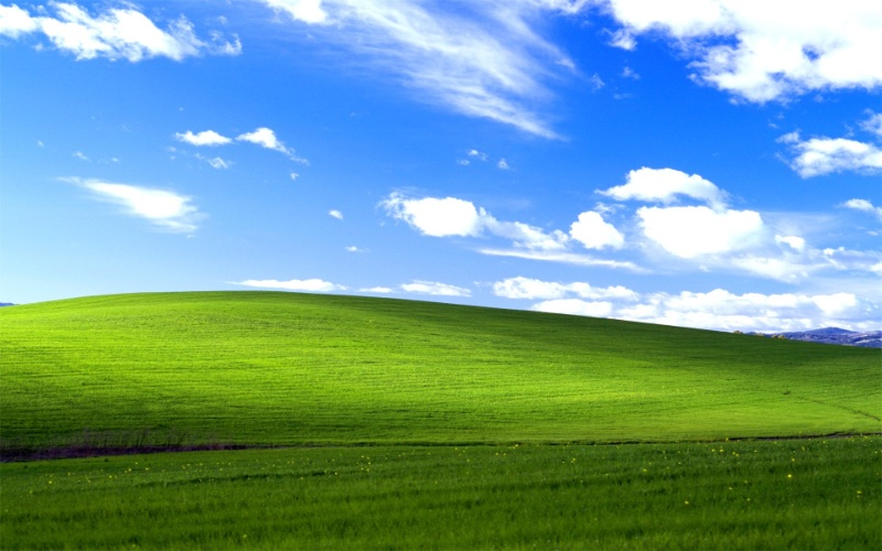 A picture of the Windows XP background